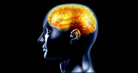 Can 3D brain view help treat Alzheimer's, Parkinson's? | ALS | Scoop.it
