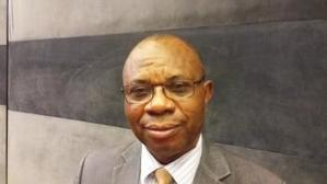La Banque africaine de développement sur le chemin de révolutionner l'agriculture en Afrique | Questions de développement ... | Scoop.it