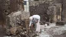 Inwoners Pompeï aten giraf als laatste avondmaal | KAP-LeanovichM | Scoop.it