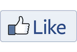 Facebook prompts fans to get notifications after liking a page | Following Facebook | Scoop.it