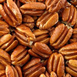 Antioxidants in Pecans Provide Protective Effect Against Diseases   Wellness Life   Scoop.it