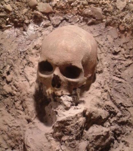 80 crânes issus d'un sacrifice humain découverts en Chine | Aux origines | Scoop.it