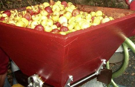 Viane. Des pommes pour l'école ! | Les Monts de... | Lacaune et les Monts de Lacaune | Scoop.it