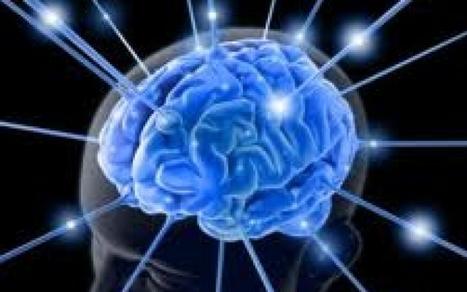 """El Nobel de Medicina: """"El cerebro es un órgano mágico y ... - El Mostrador   El cerebro y yo. Necesidades y características.   Scoop.it"""