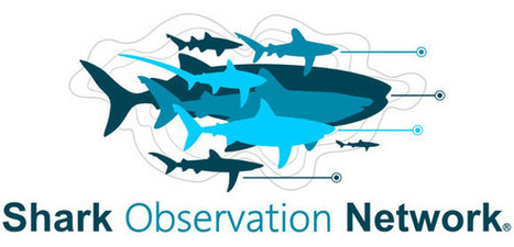 #Sevengill #Shark sightings website adds methodology page ~ #ScienceDiver Michael Bear... | Rescue our Ocean's & it's species from Man's Pollution! | Scoop.it