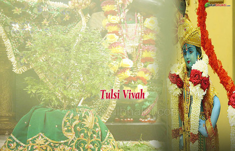 Festivals wallpaper, Hindu wallpaper, Tulsi Vivah Wallpaper,, Download wallpaper, Spiritual wallpaper - Totalbhakti Preview | totalbhakti | Scoop.it