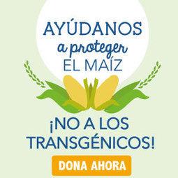 Quién es Monsanto   Revolución sustentable   Scoop.it