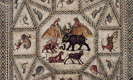 The Lod mosaics – a carnival of animals - The Guardian | Smash!Mosaics | Scoop.it