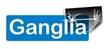 Ganglia Monitoring System | EEDSP | Scoop.it
