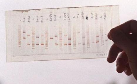 L'ADN humain ne peut pas être breveté, dit la Cour suprême américaine | Autres Vérités | Scoop.it