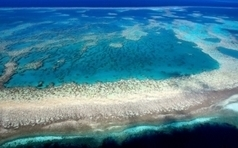 Lowering Ocean Acidity Promotes Coral Growth on Great Barrier Reef | Sustainable Futures | Scoop.it