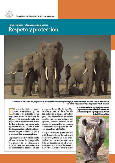 Lucha contra el tráfico de fauna silvestre: Respeto y protección   IIP Digital   Ecología   Scoop.it