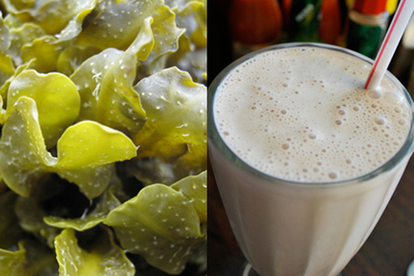 Seaweed Shakes in Belize: Nutritious and Delicious | Belize in Social Media | Scoop.it