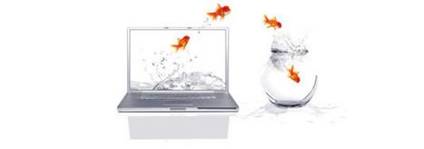 Externalisation de la com' dans les PME | Visibilité locale sur le Web | Scoop.it