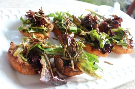 The Future of Food: Edible Insects - Field and Feast | Interesting Insects | Scoop.it