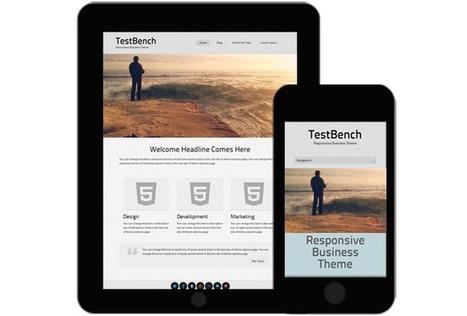 Web design and ecommerce - Web design with WordPress and ecommerce with PrestaShop | Diseño Web Málaga | Scoop.it