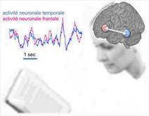 La lecture : un vrai travail d'équipe dans le cerveau | Intelligence individuelle et Développement personnel | Scoop.it
