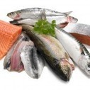 Fish is great food!  Omega-3 fatty acids contained in fish bring added benefits for us all! | Nutrition, Allergen and Ingredient News and Information | Scoop.it