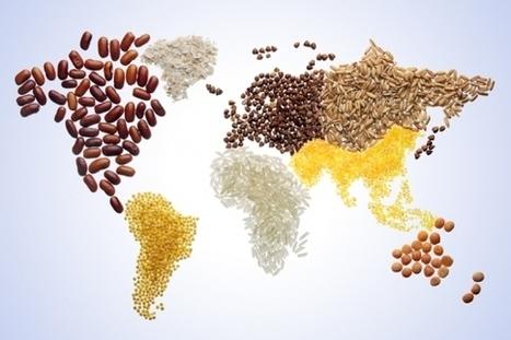 Pflanzenforschung.de :: CRISPR/Cas wird auch unsere Nahrungspflanzen verändern Wie gehen wir damit um? | Agrarforschung | Scoop.it