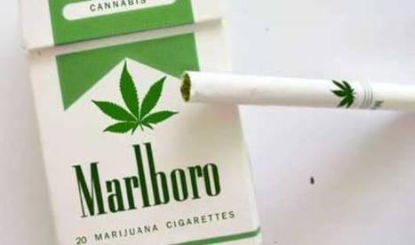 Phillip Morris Introduces Marlboro Marijuana Cigarettes | VIP DEALS AND DISCOUNTS Worldwide | Scoop.it