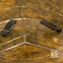 Scholiere kan telefoon in 30 seconden opladen | KiviNiria informatica | Scoop.it