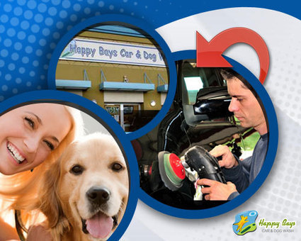 Pet Wash and Car Wash Services for a Sparkling Car and Shinning Dog | Good Dog and Pet Washing Service | Scoop.it