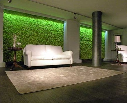 Jardines verticales muros verdes libres de for Muros de plantas verticales