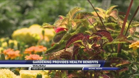 Study Discovers Gardening has Health Benefits - WSAW | Gardening with Heirloom Plants | Scoop.it