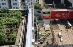 Émergence de potagers sur les toits à Pékin et Hong Kong | SmartPlanet.fr | Chronique d'un pays où il ne se passe rien... ou presque ! | Scoop.it