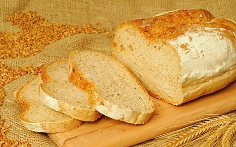 Britain's bread industry turns stale - Telegraph | bakery industry | Scoop.it