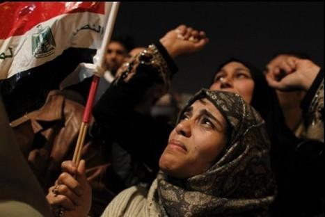 L'indignation internationale  suite aux perquisitions chez les ONG  oeuvrant en Égypte  - 1e partie - | Égypt-actus | Scoop.it
