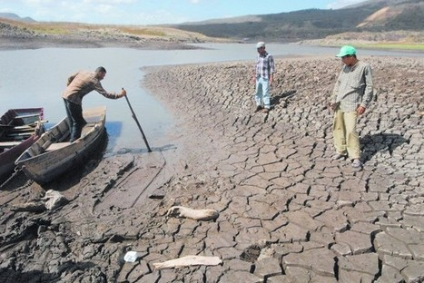 El Niño Triggers Drought, Food Crisis in Nicaragua | Inter Press Service | Sustain Our Earth | Scoop.it