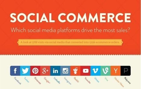 Which Platform Drives the Most Sales? [INFOGRAPHIC] | @AskJamieTurner | Digital Media Community | Scoop.it