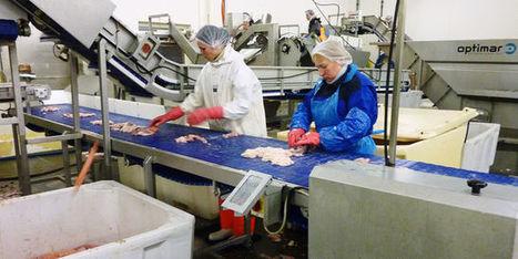 Les acteurs de la pêche du cabillaud s'accordent sur un moratoire en Arctique - le Monde | Actualités écologie | Scoop.it