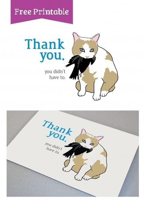 Free Printable for cat lovers   DIY & Design Freebies   Scoop.it