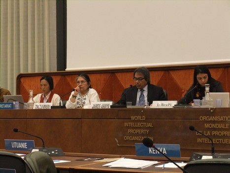 Indigenous Peoples Rights' Reaffirmed By UN Rapporteur, Panellists, At WIPO | Intellectual Property Watch | Copyright Policy | Scoop.it