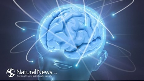 Neuroplasticity; Improving Brain Function with Chiropractic Care - Natural News Blogs | chiropractic | Scoop.it