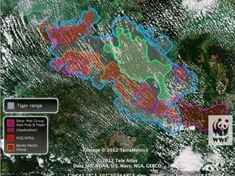 Species and Habitats Being Saved by Google Earth | Vertical Farm - Food Factory | Scoop.it