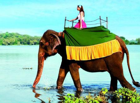 Sri Lanka: A land like no other | Jeremy's Blog | Scoop.it