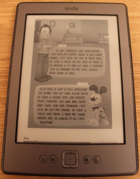 Livres numériques : la bande dessinée dématérialisée est-elle au rendez-vous ?   BiblioLivre   Scoop.it