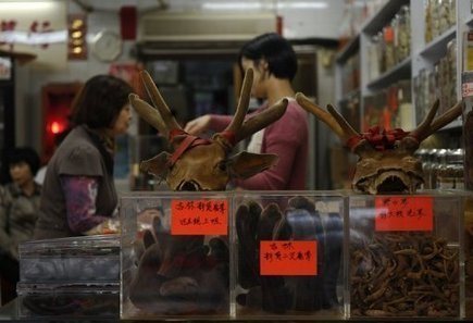 Hong Kong prescribes new dose of old Chinese medicine - Yahoo!7 News | Ancient Origins of Science | Scoop.it