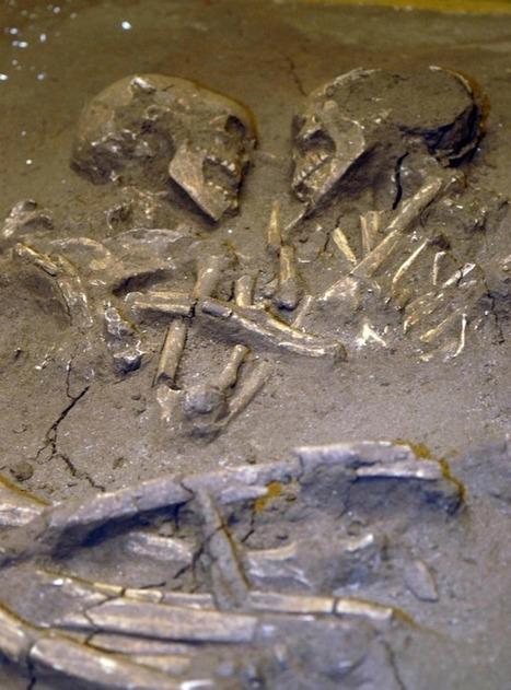 Amore per sempre: insieme da seimila anni. Gli amanti di Valdaro | World Neolithic | Scoop.it
