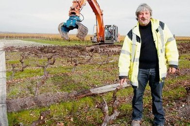 "Arrachage de vignes | ""Viticulture en gironde"" 