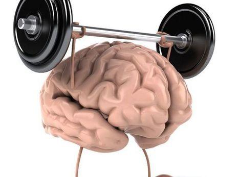 Brain Training: le migliori 5 App per allenare il vostro cervello - Impronta Unika | Mente e Cervello | Scoop.it