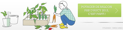 Été 2013 : notre sélection de bons plans | Retraite - famille et vie sociale - Temps libre | Scoop.it
