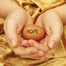 Choosing To Use A Donated Egg For Conception by Robert Fogarty | adam jon | Scoop.it