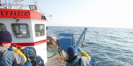 Capbreton (40) : un marin décède dans l'incendie d'un chalutier | BABinfo Pays Basque | Scoop.it