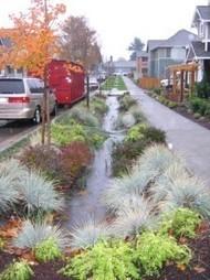 Barrel-Free Rainwater Harvesting in SLO County | Gardens by ... | Rainwater Harvesting : world tour | Scoop.it