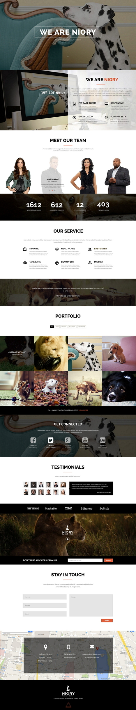 Niory Pet Care Responsive Joomla Template - Download New Themes | Sports & Entertainment | Scoop.it
