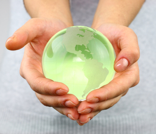 Creating a 21st Century Green Office | News for SMEs | Scoop.it